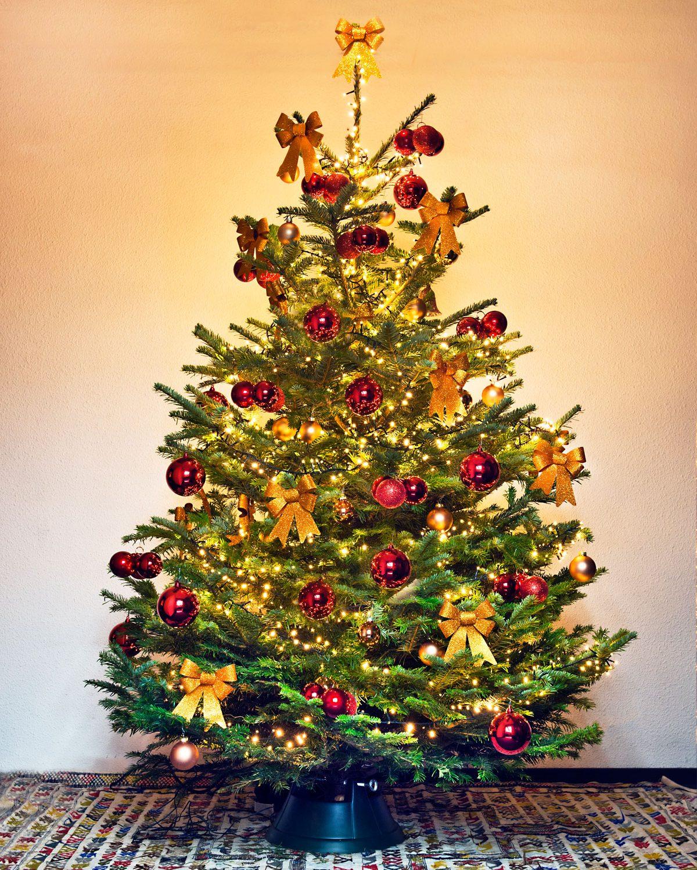 Parijs - Luxe boom rood goud