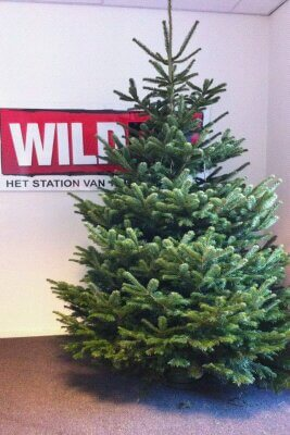 Complete Kerstboom Groen Geel With Complete Kerstboom Awesome