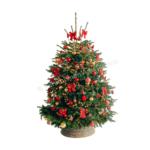 Versierde kerstboom Moulin Rouge